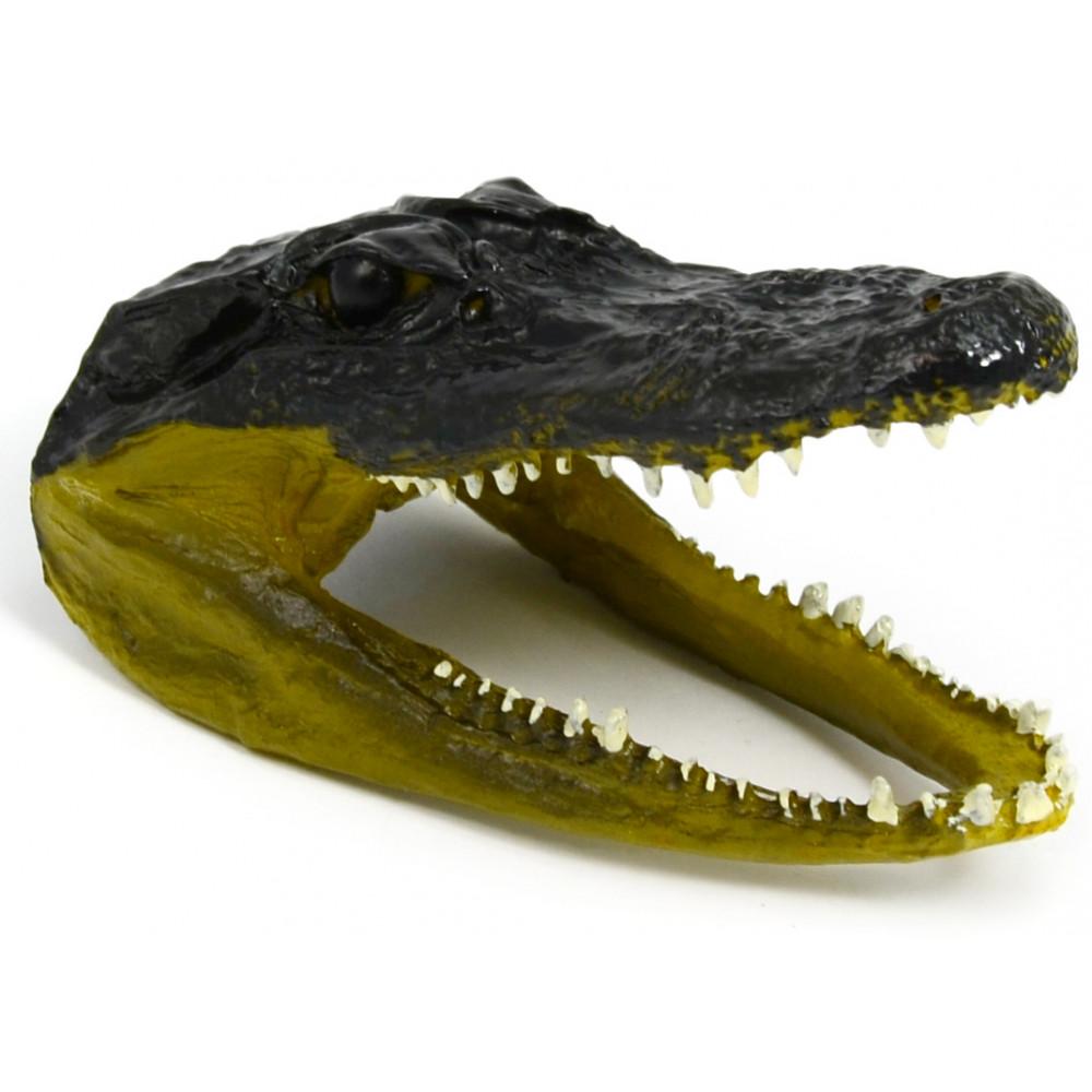 resin alligator head 5 5. Black Bedroom Furniture Sets. Home Design Ideas