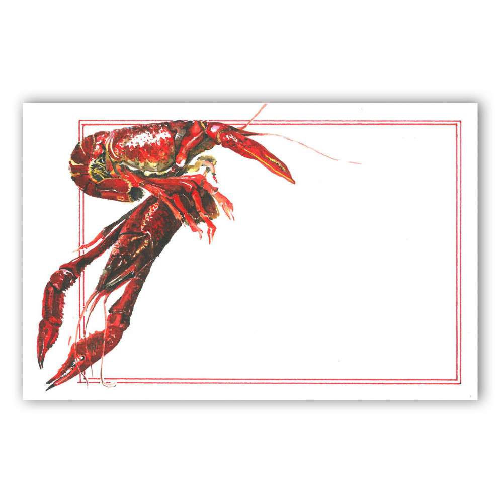 Crawdaddy Crawfish Boil Invitation MardiGrasOutletcom