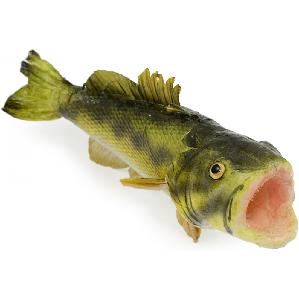 8 paper mache large mouth bass mk2044 for Big mouth fish